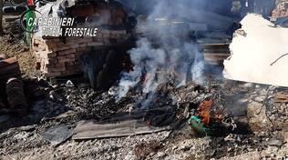 rifiuti abbandonati e bruciati