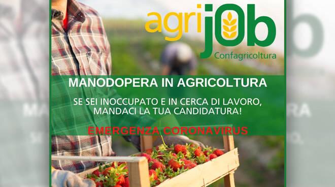 Confagricoltura Asti potrà disporre di nuovi lavoratori agricoli
