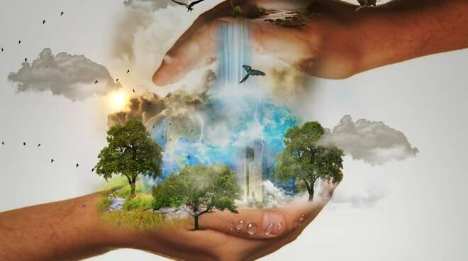 conservazione natura pixabay