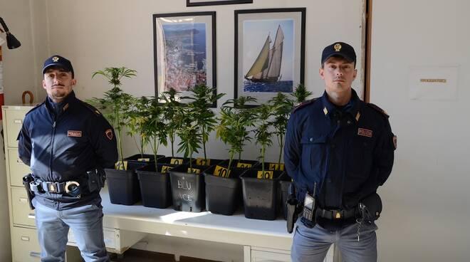 marijuana sequestrata asti