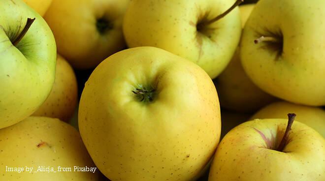 mele, mela, san marzano oliveto