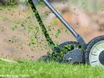 Piemonte, riaprono tutte le attività di manutenzione del verde, sfalci, falciatura