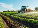 trattore, agricoltura