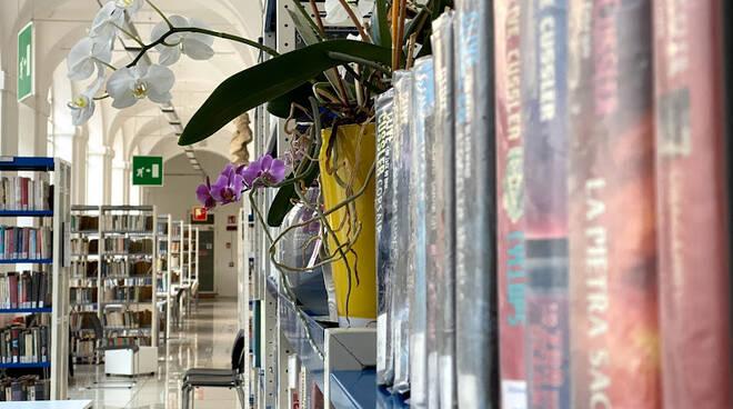 biblioteca asti