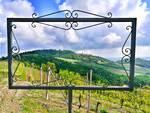 Domenica 28 Giugno a Ponzano Monferrato giornata fra fiori e paesaggio