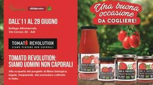 tomato revolution 2020