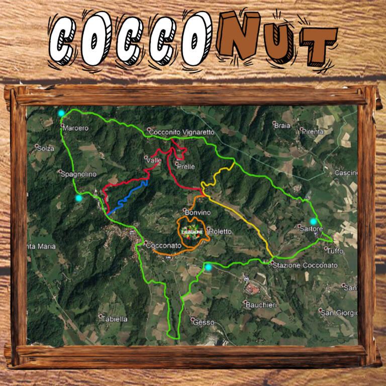 cocconut