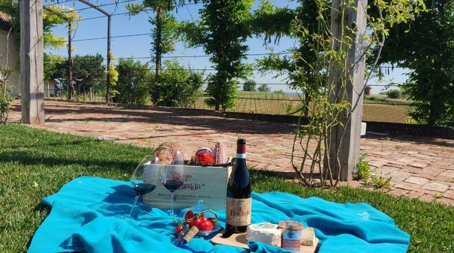 pic nic braida wine resort