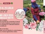 promo linea rosa di damasco altromercato