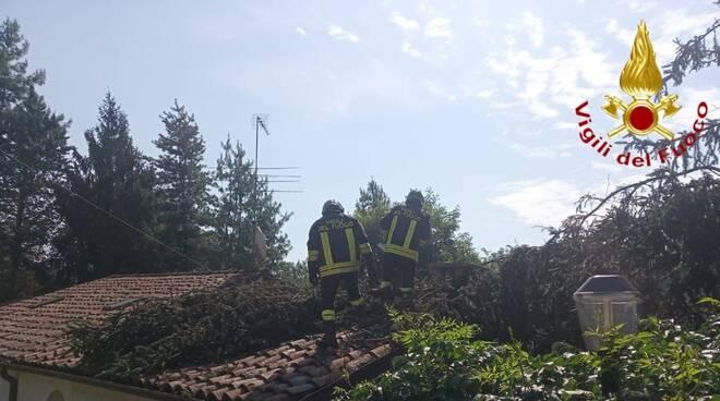 albero su casa vigili del fuoco 11082020