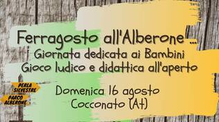 Ferragosto all'alberone