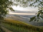 langhe roero monferrato on air foto credit alessandro sgarito