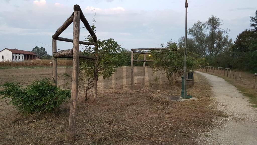 Parco Tanaro pulito