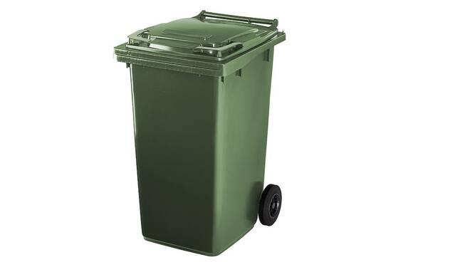 bidone verde rifiuti