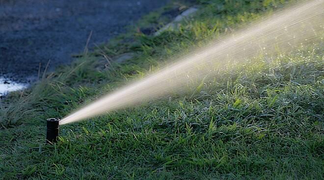 impianto irrigazione giardino Foto di Patricia Alexandre da Pixabay