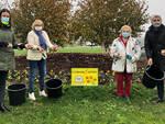 Oltre tremila bulbi donati da Messer Tulipano di Pralormo per le aiuole di Alba