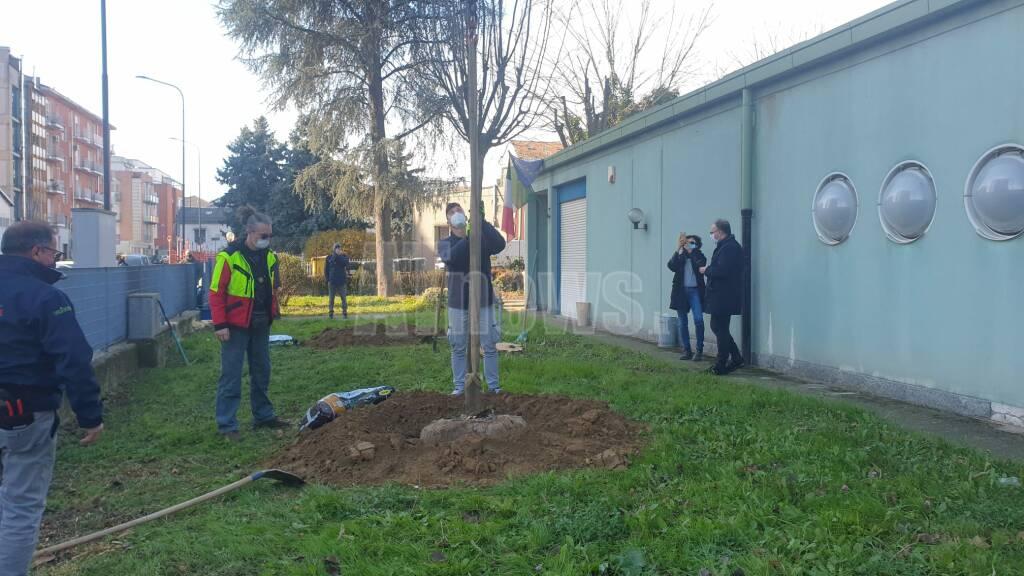 piantumazione alberi scuola materna agazzi giornata nazionale dell'albero 2020