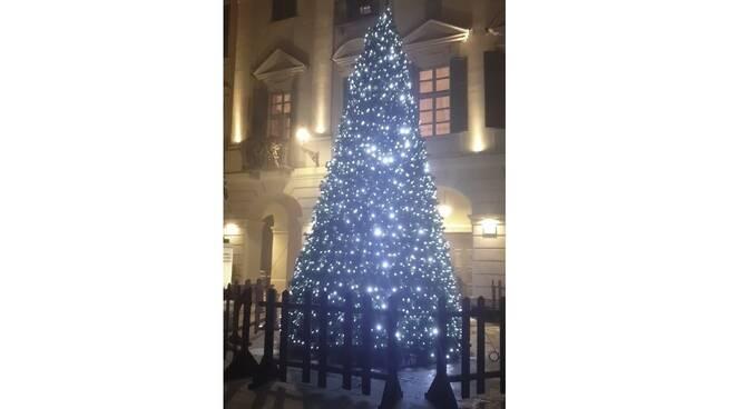 albero di natale san damiano 2020