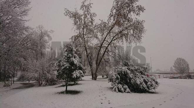 Neve Asti 02122020