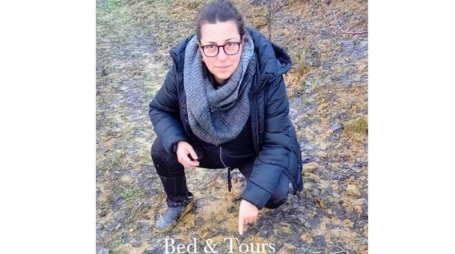 bed & tours marilena gaffoglio cinghiale
