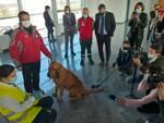 cani anticovid aeroporto cuneo