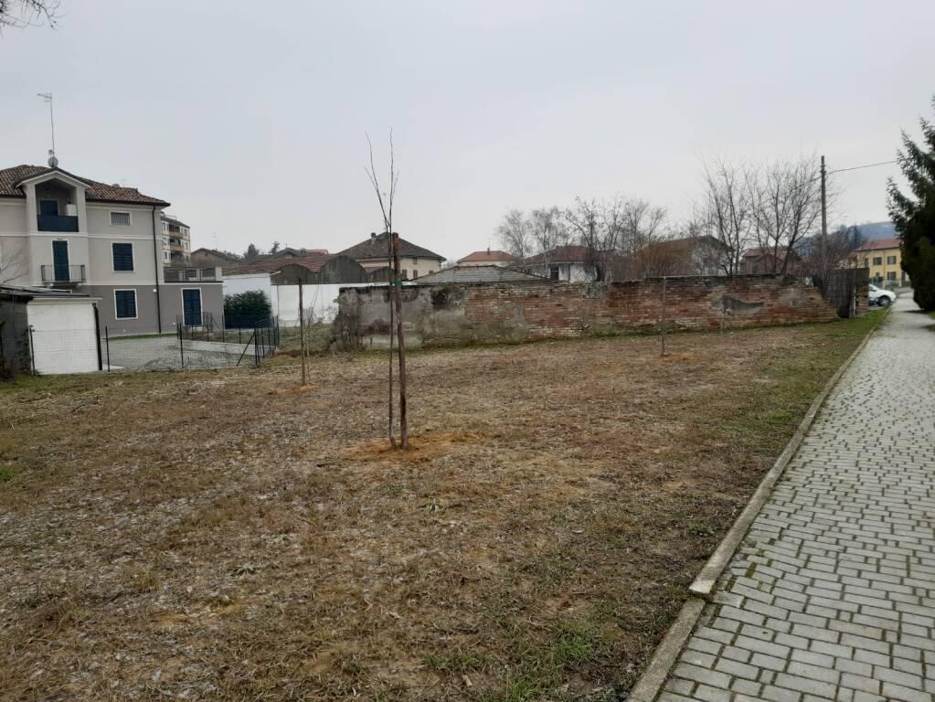 cerimonia alberi scuola media nizza monferrato