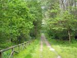Parchi naturali in Piemonte