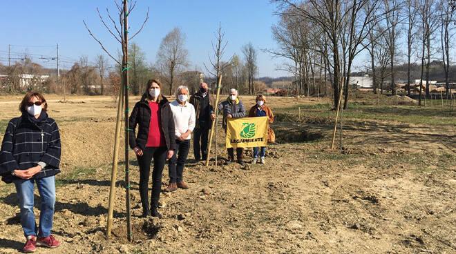 A Villafranca novantanove alberi piantati al parco delle Verne