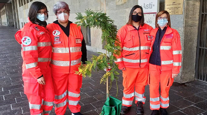 Dalla Provincia di Asti un alberello di mimosa alle volontarie in divisa per l'8 marzo