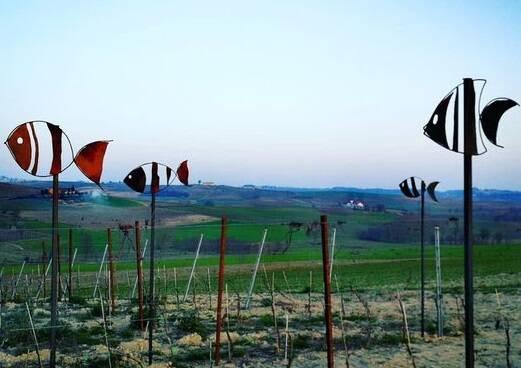 progetto terremerse giorgia sanlorenzo