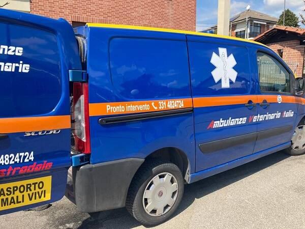 ambulanza salvataggio animali