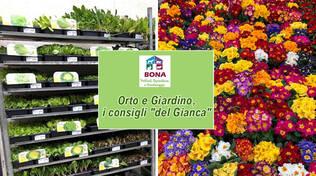 orto e giardino aprile