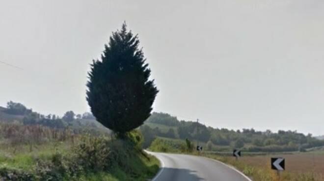 Strada provinciale 46 Castelnuovo Belbo e Incisa Scapaccino