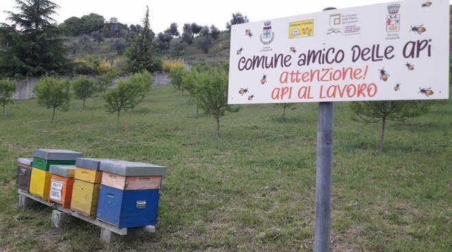 Ponzano Monferrato diventa comune \'Amico delle Api\'