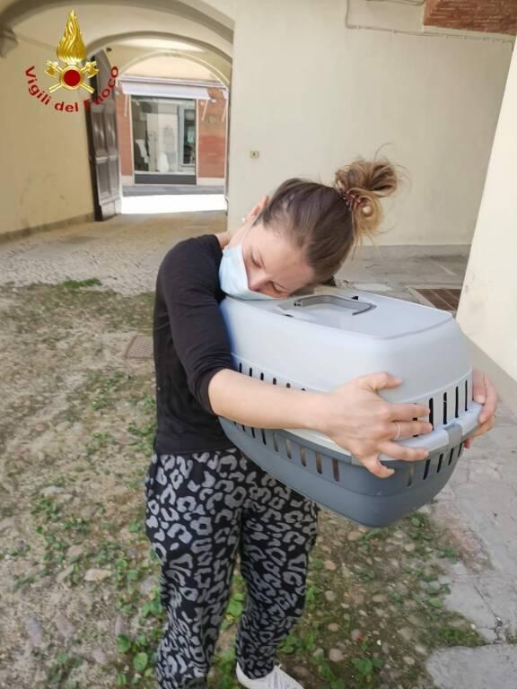 salvataggio gatto asti via aliberti