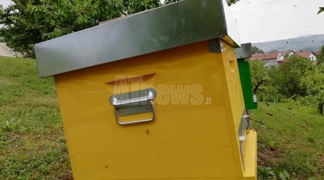 sostegno apicoltura