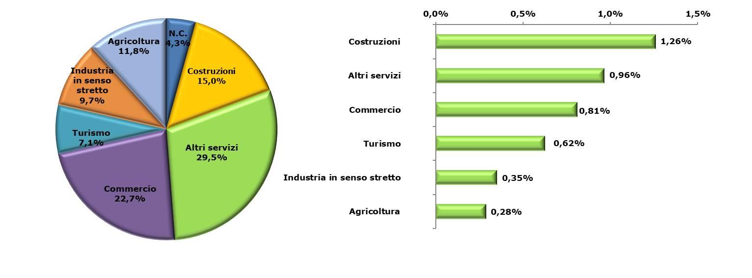 imprese registrate per settore e provincia
