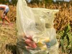 Sedie, ombrelli, centinaia di mascherine e oltre trenta sacchi di rifiuti raccolti questa mattina da Protect Our Home.