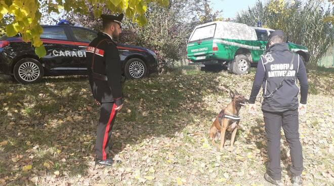 carabinieri forestali ricerche esce avvelenate