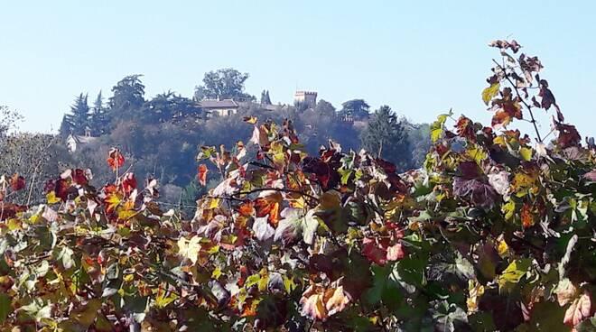 Ponzano, domenica 17 ottobre arrivano i \'Colori d\'autunno\'