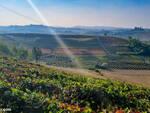 colline mombercelli