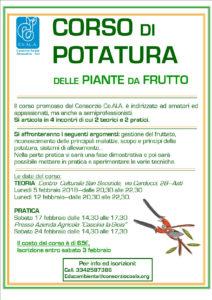 Corso di potatura delle piante da frutto for Potatura piante da frutto